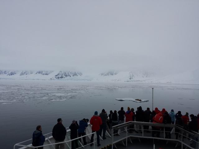 Wommack Phone Arctic 277