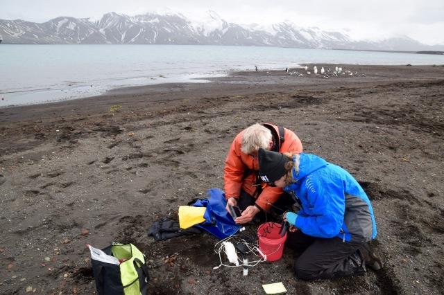 whalers bay probe test